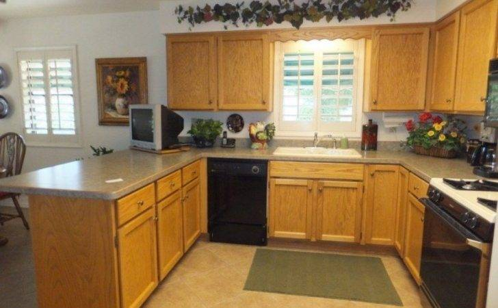 New Kitchen Cabinets Budget Astounding Quality