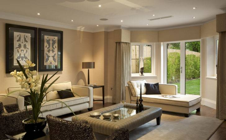 Nicely Decorated Living Rooms Home Decoration