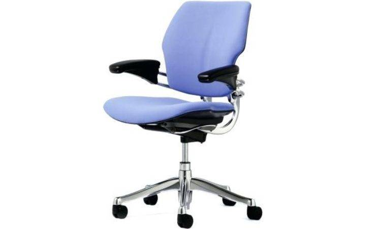 Office Chairs Small People Animaleyedr