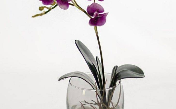 Orchid Glass Vase