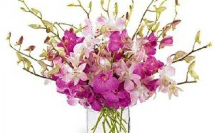 Orchids Beautifully Arranged Glass Vase Myflowergift