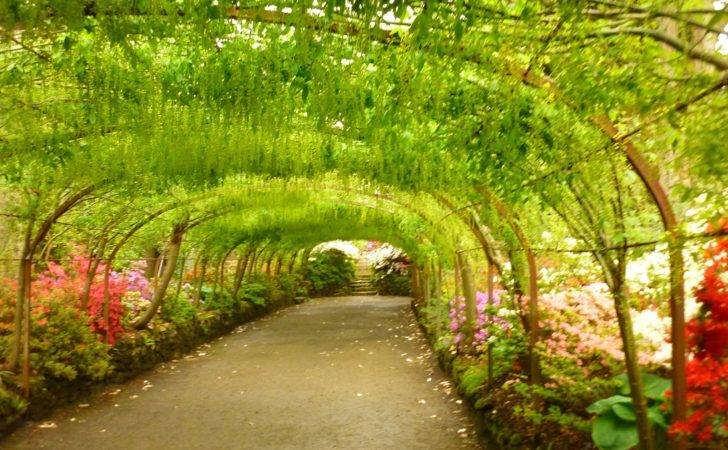 Other Thoughts Bodnant Gardens