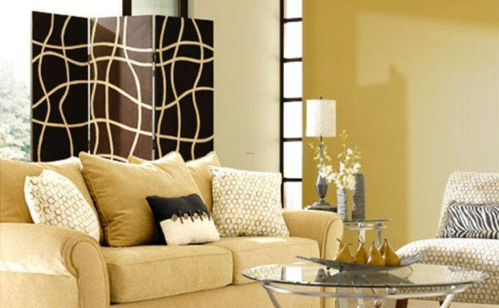 Paint Colors Small Living Room Interior Decorating