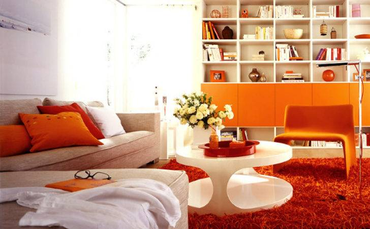 Reasons Using Bold Colors Decoration