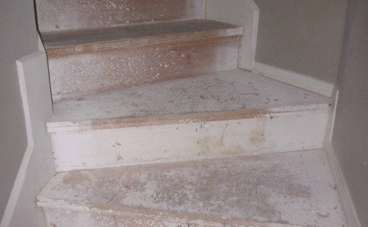 Refinished Our Stairs Diy Style Design Gab