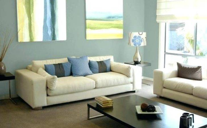 Relaxing Color Schemes Living Room