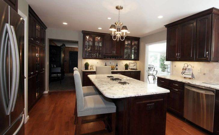 Remodel Kitchen Cabinets Yourself Peenmedia