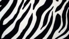 Reserved Upholstery Fabric Zebra Print Velvet Stripes