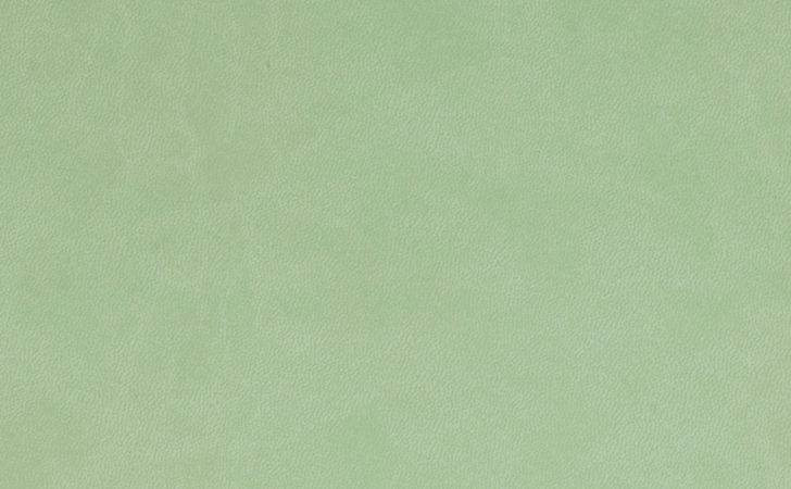 Sage Green Related Keywords Long Tail