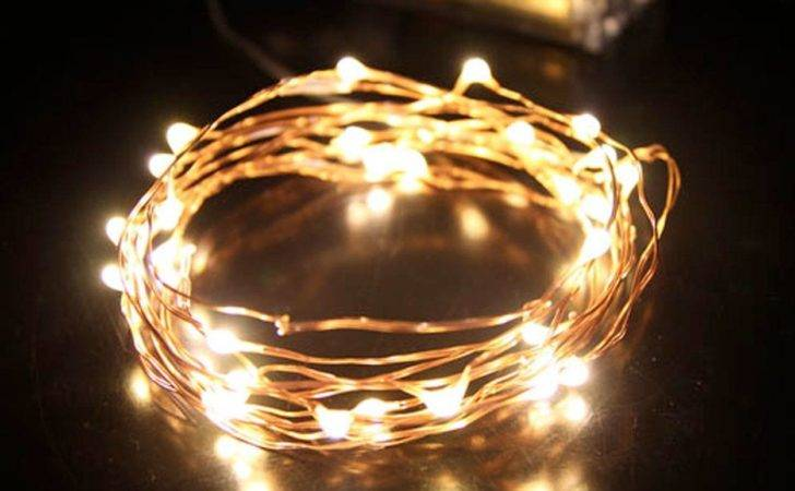 Seed Fairy Lights Copper Battery Led