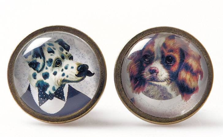 Set Funny Quirky Dogs Door Knobs Dressed