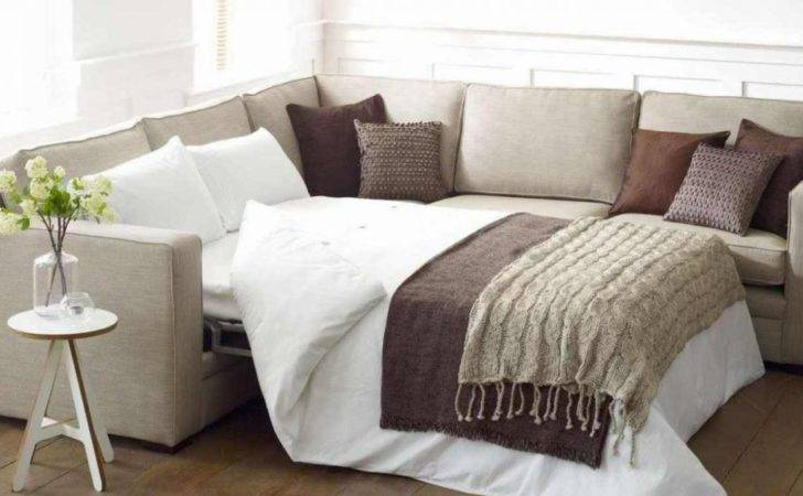 Shaped Sectional Sofa Pull Out Twin Bed Small