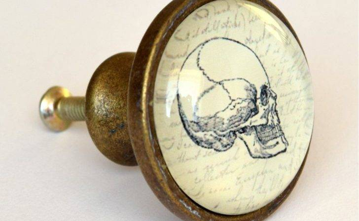 Skull Drawer Knob Quirky Vintage Style Brass Cupboard Door