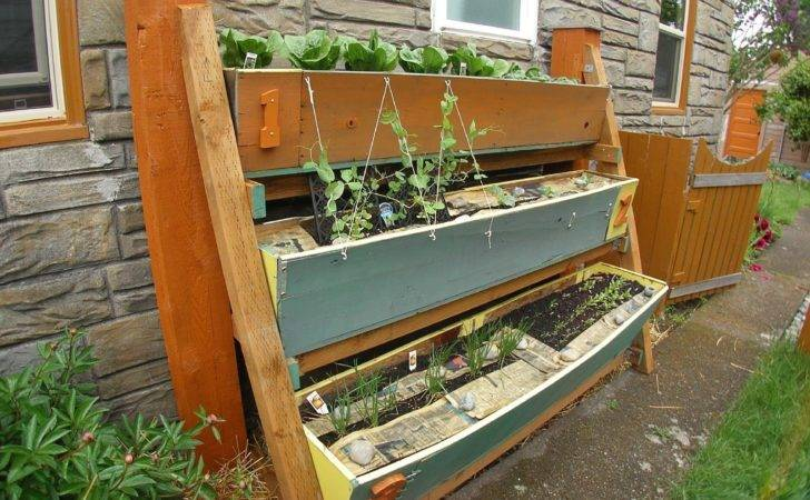 Small Space Gardening Clever Ideas Grow
