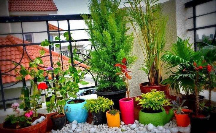 Smart Small Space Gardening Ideas Tips City