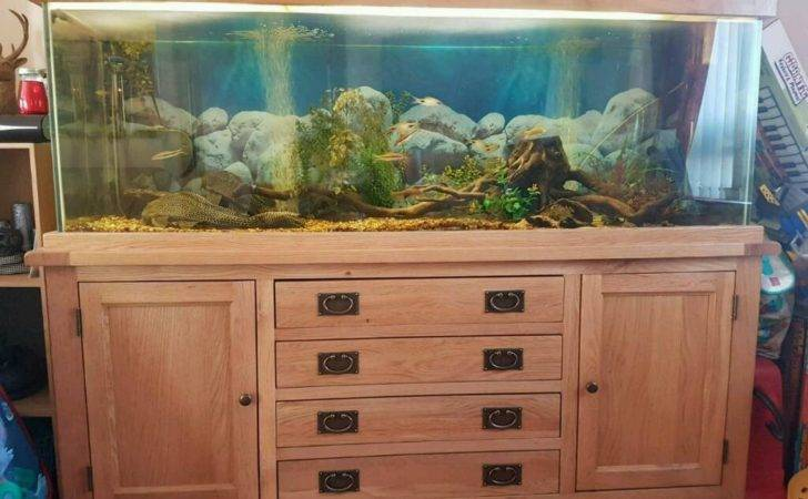 Solid Oak Fish Tank Peterhead Aberdeenshire