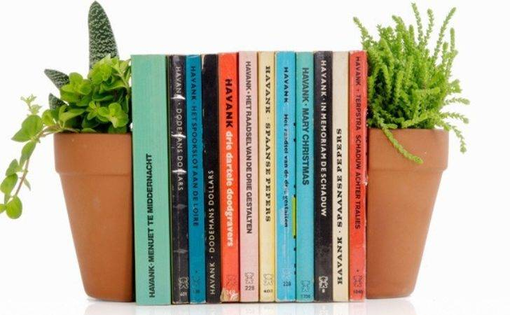 Suck Planter Bookends Quirky Plant Pot Book Ends