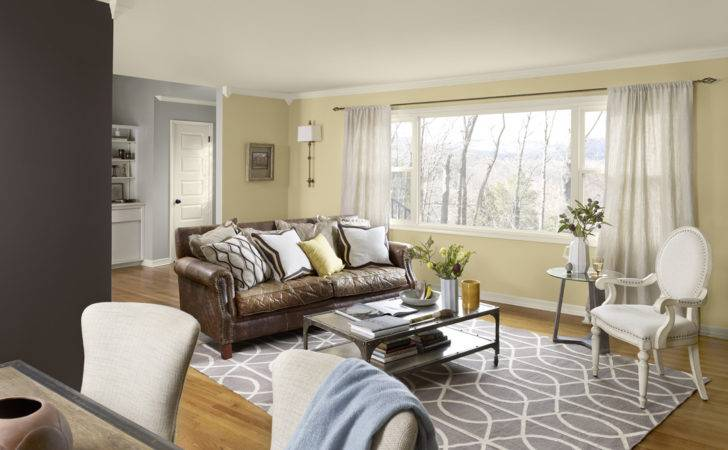 Tips Living Room Color Schemes Ideas Midcityeast