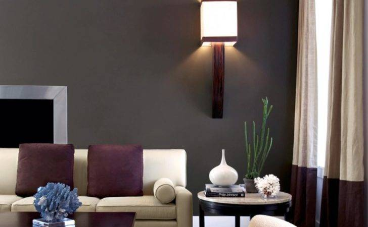 Top Living Room Colors Paint Ideas