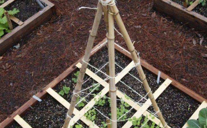 Trellis Recycled Materials Owner Builder Network