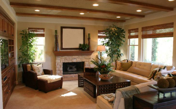 Types Living Room Styles Examples
