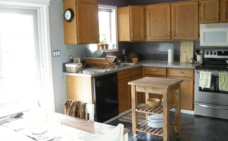Unpainted Kitchen Cabinets Decorations Natural