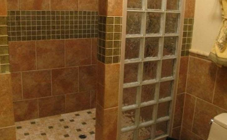Walk Shower Ideas Bold Interesting