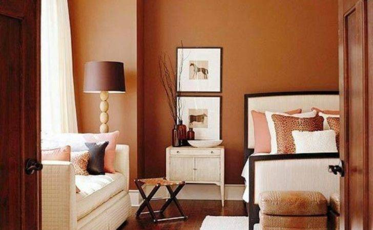Wall Color Brown Tones Warm Natural Interior