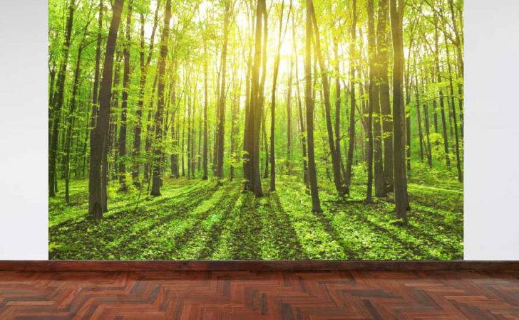 Wall Mural Summer Forest Woodland Panel Interior